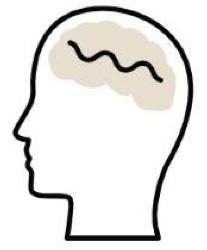 Artwork of a human head, well-being branding